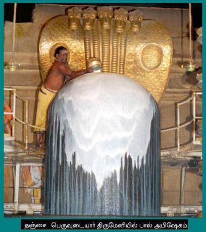 Shiva zeugt, Shakti bewahrt und entwickelt weiter. Milch für den Linga.