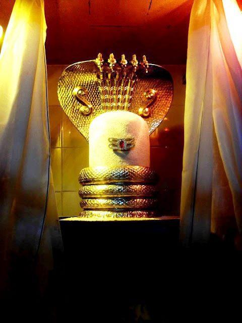 Die fünfköpfige Kobra (für die fünf Elemente) beschützt Shivas Linga