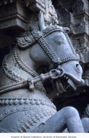 Ashwini is considered to be the wife of the Ashvini Kumaras