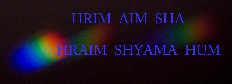 HRIM AIM SHA